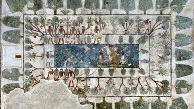 Photo of Los jardines en el antiguo Egipto
