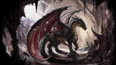 Photo of Cuando al norte de España habitaban dragones